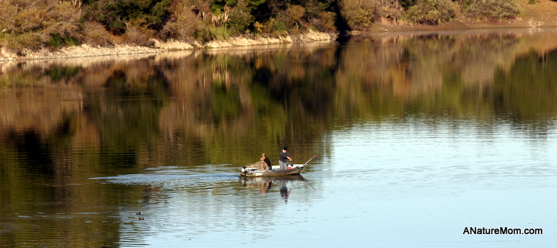 Lake Chabot 006