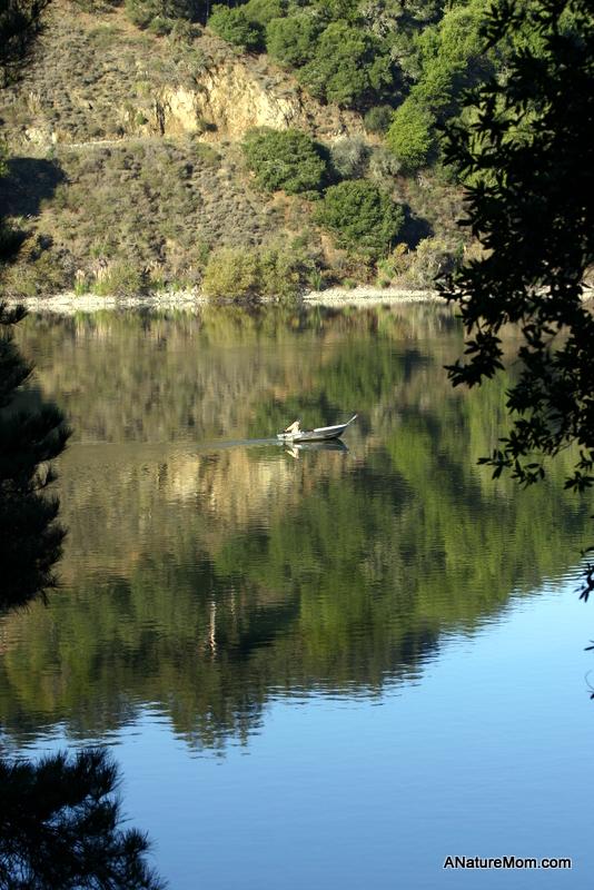 Lake Chabot 013