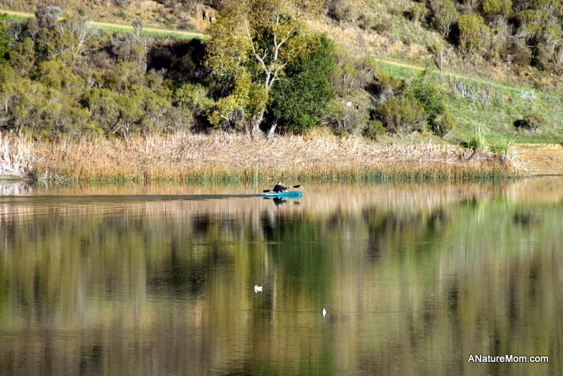 Lake Chabot 016