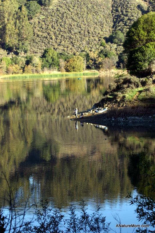 Lake Chabot 020
