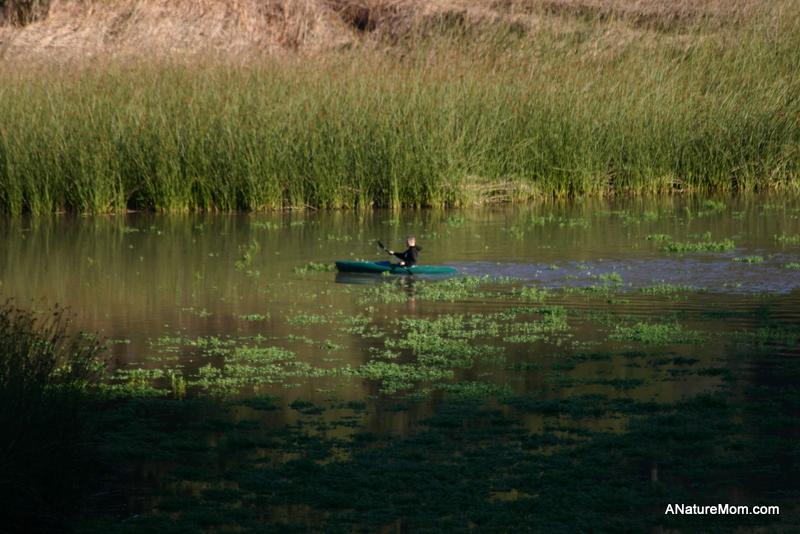 Lake Chabot 056