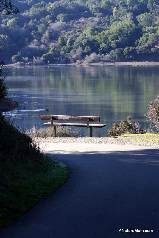 Lake Chabot 091