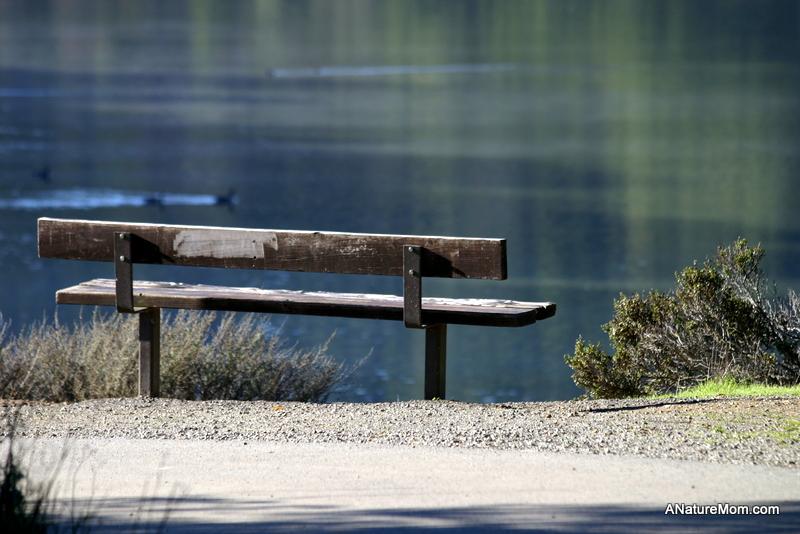 Lake Chabot 092