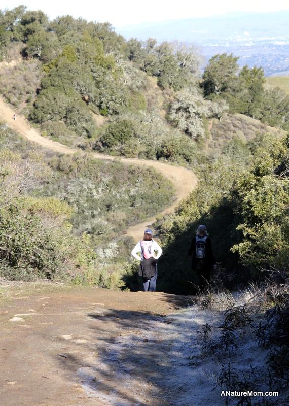 Las Trampas Coyote Hills 013