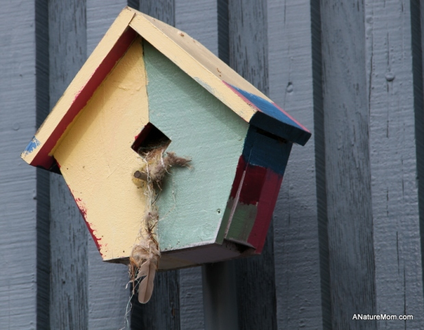 Citiblocs and Birdhouses 001