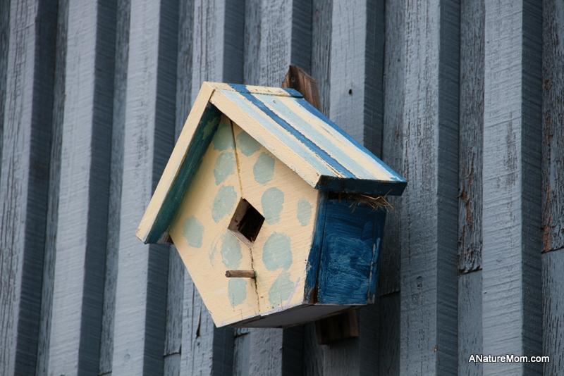 Citiblocs and Birdhouses 002