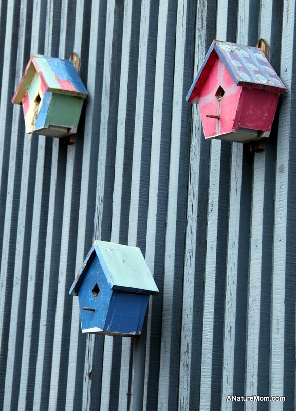 Citiblocs and Birdhouses 003