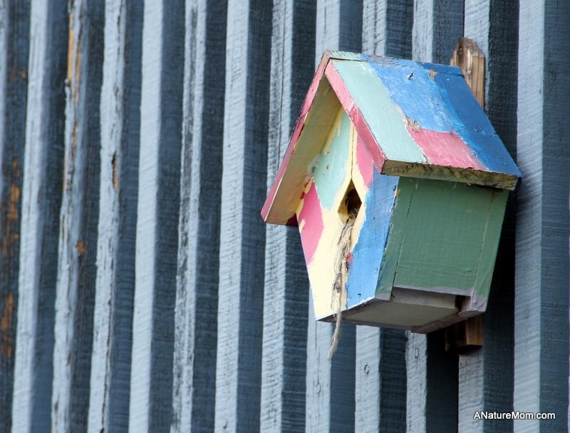 Citiblocs and Birdhouses 004