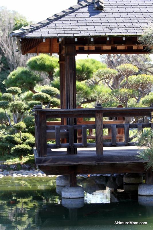 Hayward Japanese Gardens 026