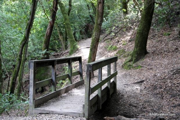 Las Trampas Hike 018
