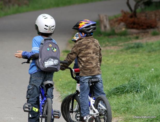 Redwood Bike Ride 004