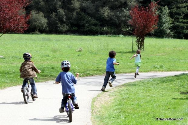 Redwood Bike Ride 049