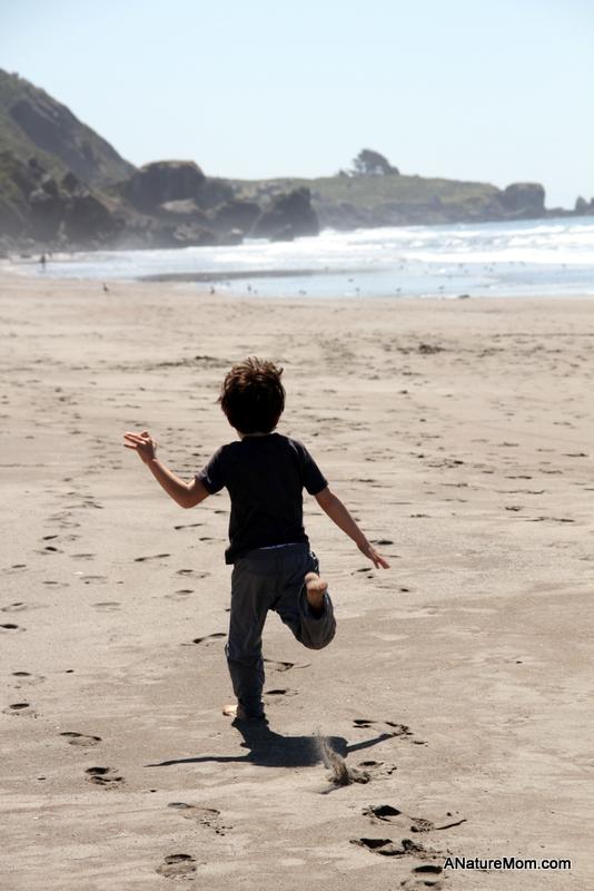 Stinson Beach Earth Day 004