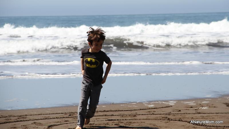 Stinson Beach Earth Day 031