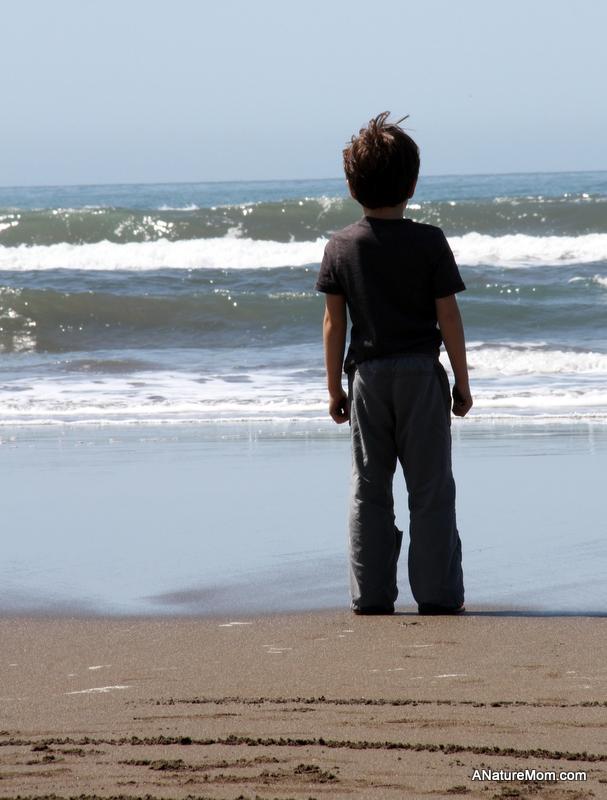 Stinson Beach Earth Day 042