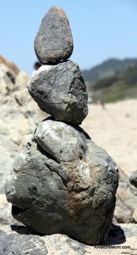 Stinson Beach Earth Day 060