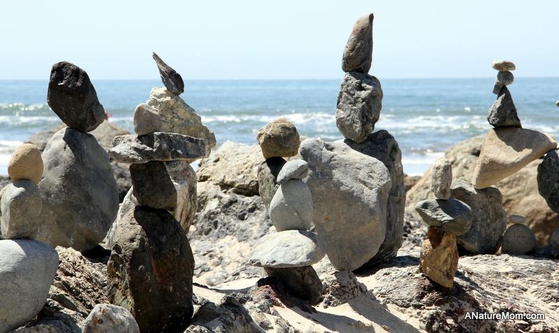 Stinson Beach Earth Day 069