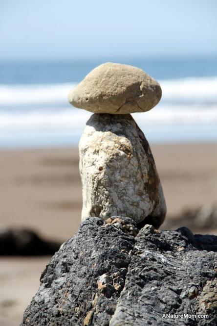 Stinson Beach Earth Day 082