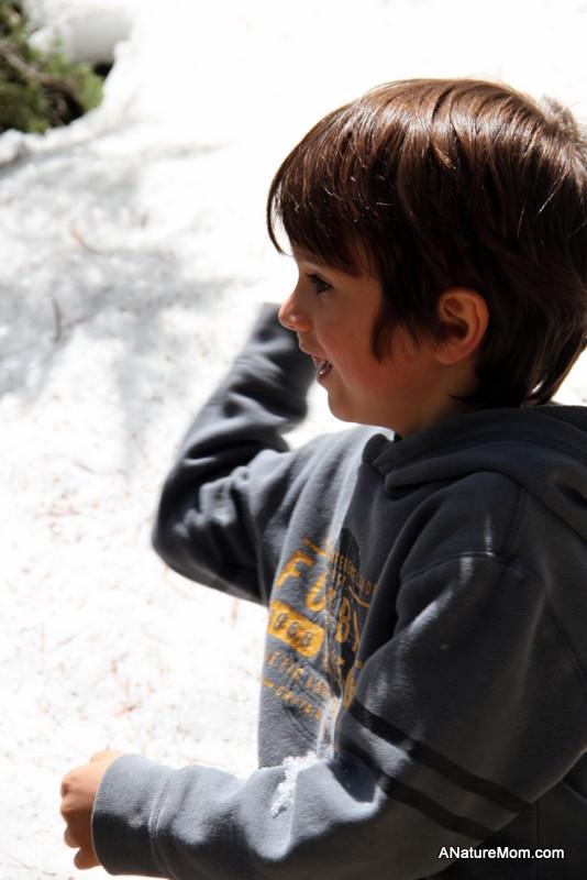 Yosemite May 2013 003