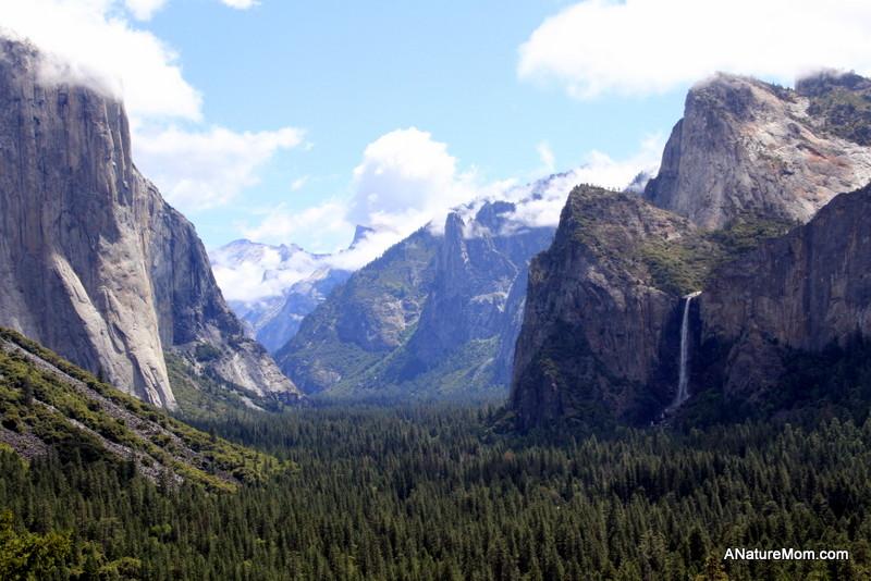 Yosemite May 2013 004