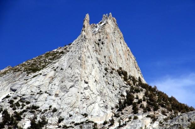 Yosemite May 2013 041