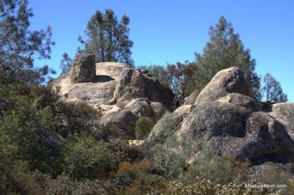 Camping Mount Diablo 018