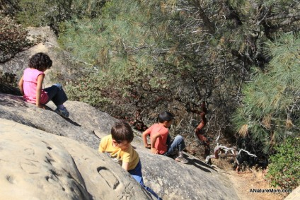 Camping Mount Diablo 025
