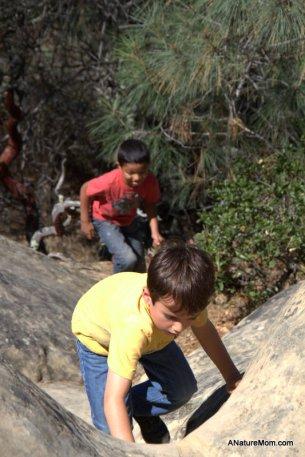 Camping Mount Diablo 026