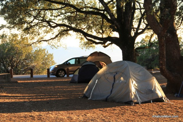 Camping Mount Diablo 036