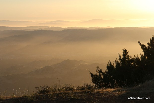 Camping Mount Diablo 048