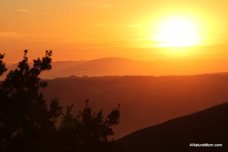 Camping Mount Diablo 076