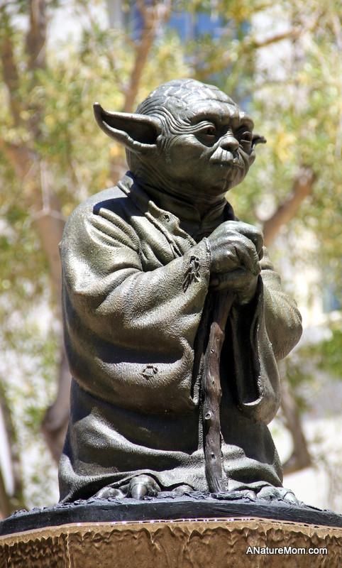 Crissy Field and Yoda 080