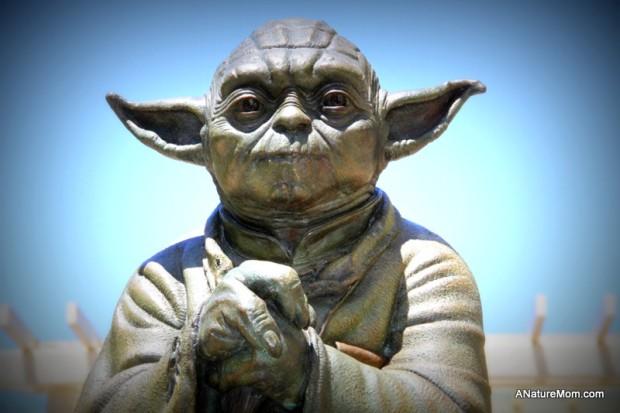 Crissy Field and Yoda 084