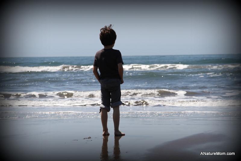 Stinson Beach Earth Day 110