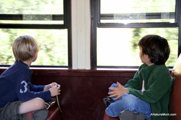Sunol Train 037
