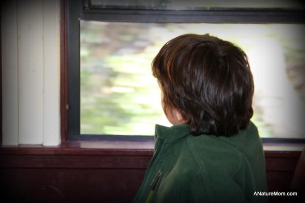 Sunol Train 044