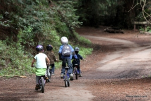 Redwood Bike Ride 018